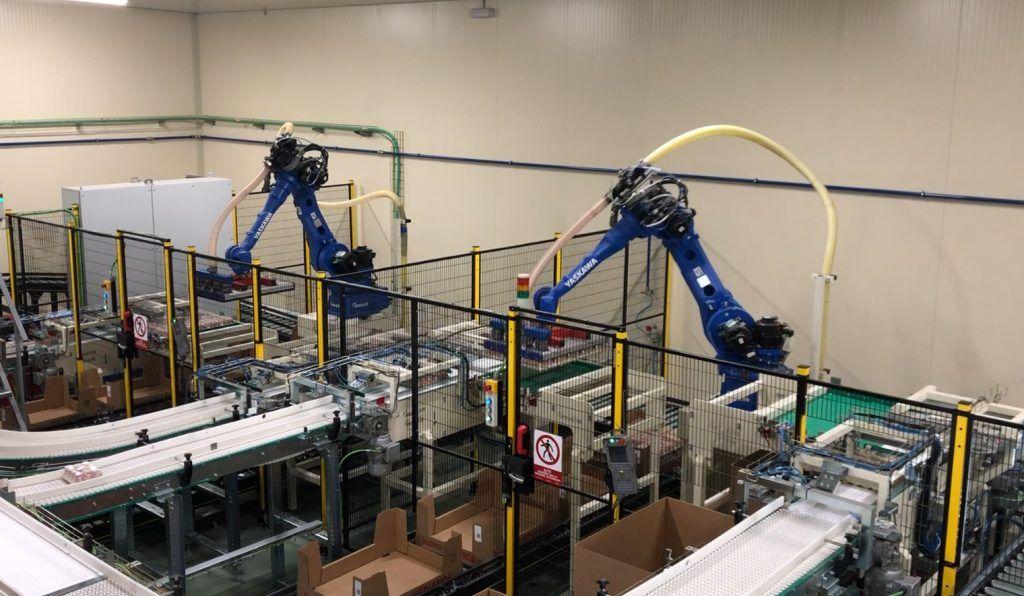granja avicola automatizada 1024x596 - Granja Avícola Automatizada. Visión artificial y herramientas avanzadas