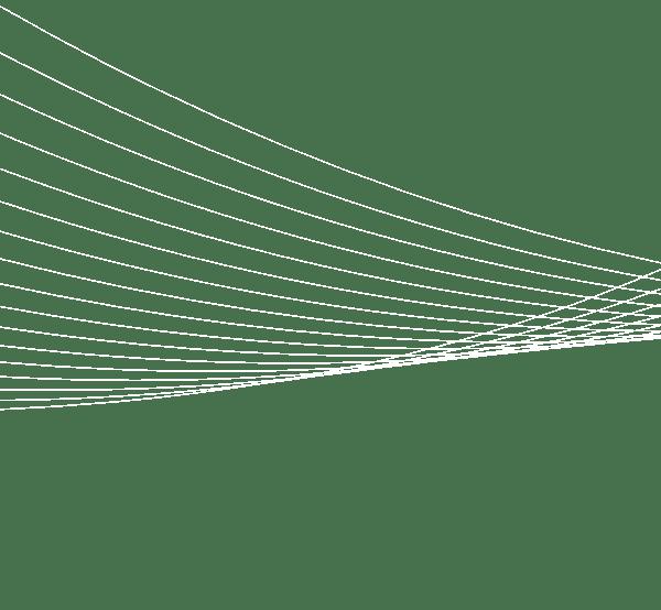 lineas lateral home centro - Verificación por visión de etiquetado